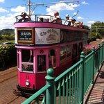 Seaton Tramway, June 2014