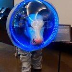 ¡Vaca astronauta!