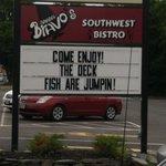 Jumping Sturgeons & Great Food