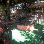 Vista del Ranchon y el Jardin
