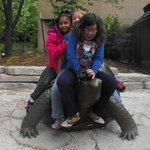 turtle outside