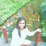 Fish feeding!