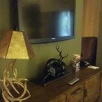 テレビは日本製。鹿の置物あり。