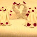 honeymoonsetup
