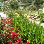 Les jardins : que de fleurs !