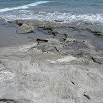 "Dangerous ""rocky beach"""