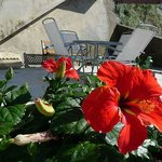 Photo of Il Colle Bed & Breakfast