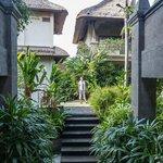 pasillos y jardin