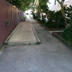 Dog Walk Area