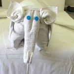"""Towel Art"""