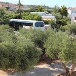 Туристические автобусы катаются днем и вечером