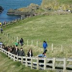 walk rope bridge