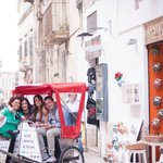 Velo Service - Bike Rental & Tours