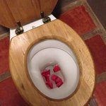 Rose petals in the loo!