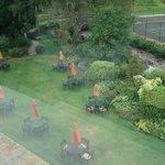 Lovely garden area.