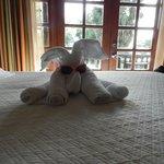 Hotel Room - Santa Cruiz