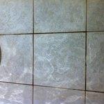 Filthy tiles on floor