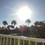 Beautiful sun shining on our balcony