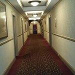 Hallways with mirrors