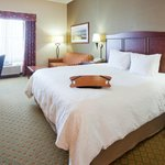 Photo de Hampton Inn Duluth