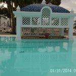 swim bar