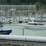Seward Harbor from aboard cruise ship