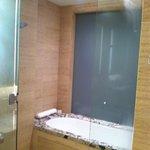 The shower/bath combo