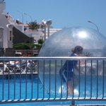 Entertainment - 'AQUA  BALL'   !