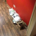 Garbage on floor in hallway