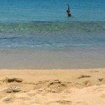 золотой песчаный пляж Плака