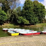 Canoes awaiting to be rented