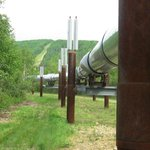 Alaska Oil Pipeline - not as big as I thought