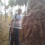 Termite hill at the back of Badala.