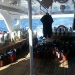 Seagull - Diving deck