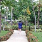 jardin camino a la playa