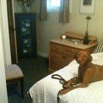 Judit enjoys her stay at The Log Cabin Motel