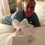 towel dog made by reservationist held birthday card