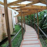 walk way to the rooms - stay dry but in the jungle