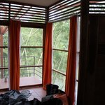 windows in the rooms make you feel in the jungle