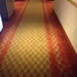 Carpet is a little ... Old fashioned but still decent decor m