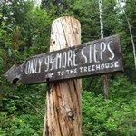 Foto de A Teton Tree House