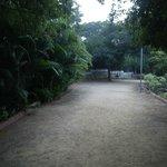 Beautiful Walking Tracks