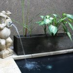 Private pool fountain - novelty :)
