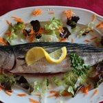"pescado fresco de ""lonja"" / fresh fish from moraira"