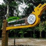 Mulu National Park :)