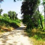 Дорога в Волюбилис