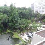 日本庭園が見えます・