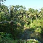 Vue sur la rivière Ayunk