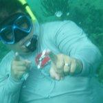 Snorkeling at ICACOS Island, PR