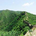 The Wild Wall Beijing